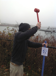 King Tide Trail Installation by Amber Desrosiers