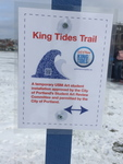 King Tide Trail Installation by Erin Bartoletti