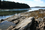 Chebeague - Bennett's Cove by Jessica Williams