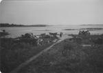 Chebeague Island - Waldo Point