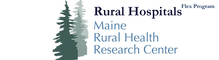 Rural Hospitals (Flex Program)