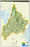 Presumpscot River Watershed Map: Working Forest Values (Map)