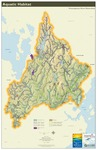 Presumpscot River Watershed Map: Aquatic Habitat (Map) by Casco Bay Estuary Partnership, Presumpscot River Watershed Coalition, and Center for Community GIS