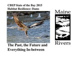 Habitat Resilience: Dams; the Past, the Future and Everything In-between (2015 State of the Bay Presentation) by Landis Hudson