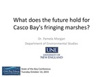 What does the future hold for Casco Bay's fringing marshes? (2015 State of the Bay Presentation) by Pam Morgan