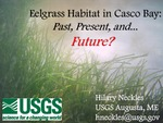 Eelgrass Habitat in Casco Bay: Past, Present, and Future? (2015 State of the Bay Presentation)