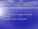 Toxic Contaminants in the Surficial Sediments of the Fore River, Maine