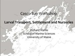 Larval Transport, Settlement and Nurseries (2011 Casco Bay Workshop Presentation) by Richard Wahle