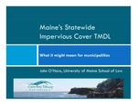 Maine's Statewide Impervious Cover TMDL: What it might mean for municipalities (2011 Presentation) by John O'Hara