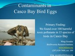 Contaminants in Casco Bay Bird Eggs (2010 State of the Bay Presentation)