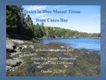 Toxics in Blue Mussel Tissue from Casco Bay (2010 State of the Bay Presentation)