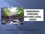 Underdog Streams, Beyond Long Creek (2010 State of the Bay Presentation) by Melissa Evers
