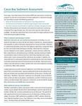 Sediment Assessment Factsheet