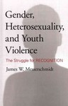Gender, Heterosexuality and Youth Violence: The Struggle for Recognition by James Messerschmidt