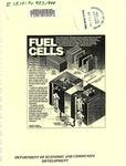 Fuel Cells by Frederick J. Munster Jr.