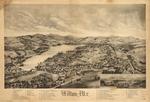 Wilton (1895)