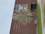 South Portland: Memorial Middle School by Gavin Glider