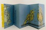 Western Meadowlarks, K L Ault (1) by K L Ault