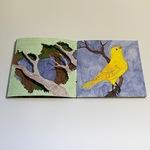 Book of Natural Oddities, Samantha Chute (3) by Samantha Chute