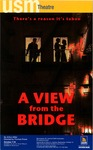 A View from the Bridge by University of Southern Maine Department of Theatre